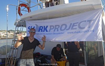 Sharkweek – Faial mit Norberto